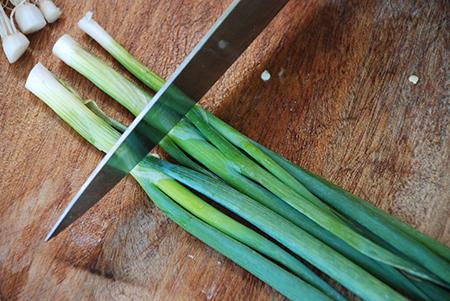 חותכים את הבצל לגבעולים באורך של אצבע (לא לחתוך את האצבע לגבעולים באורך בצל!)